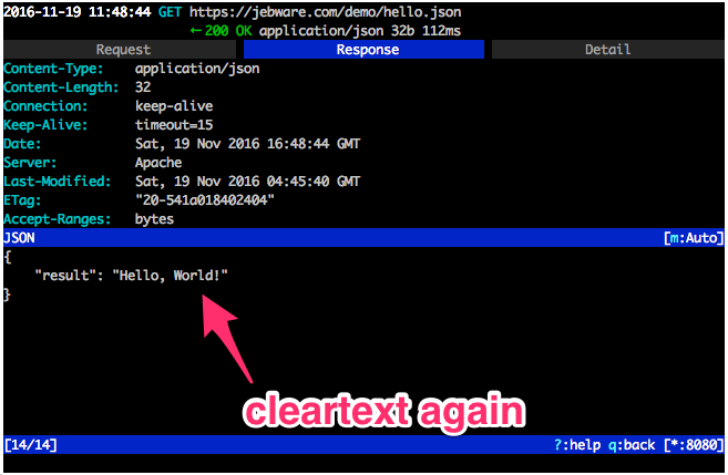 mitm-https-cleartext-marked